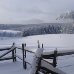 verschneiter Oberharz